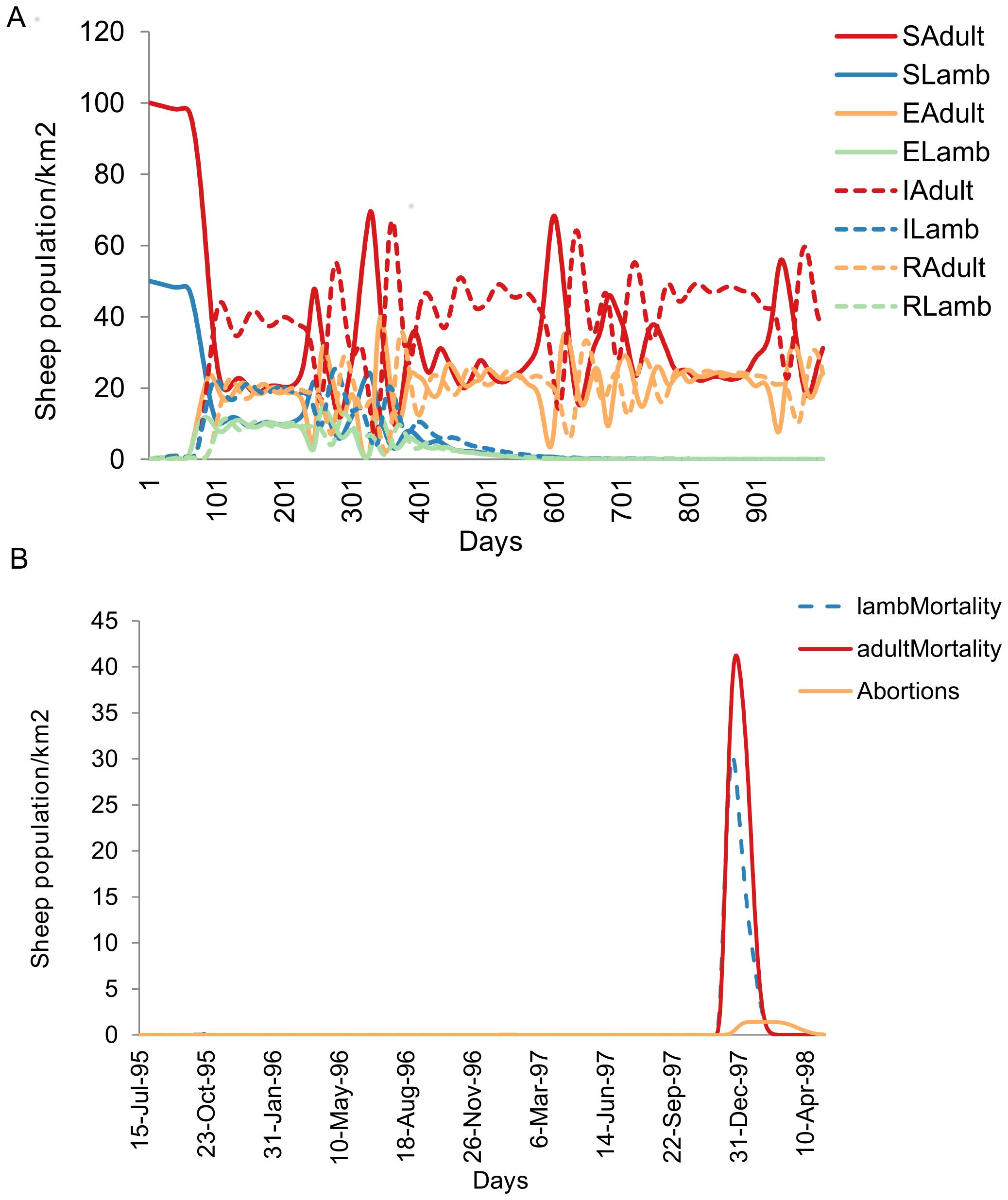 rvf-animal-infection-dynamics